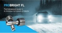 ProBright FL LED